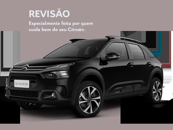Image Car Revision