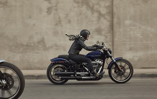 Customização The-One Harley-Davidson®